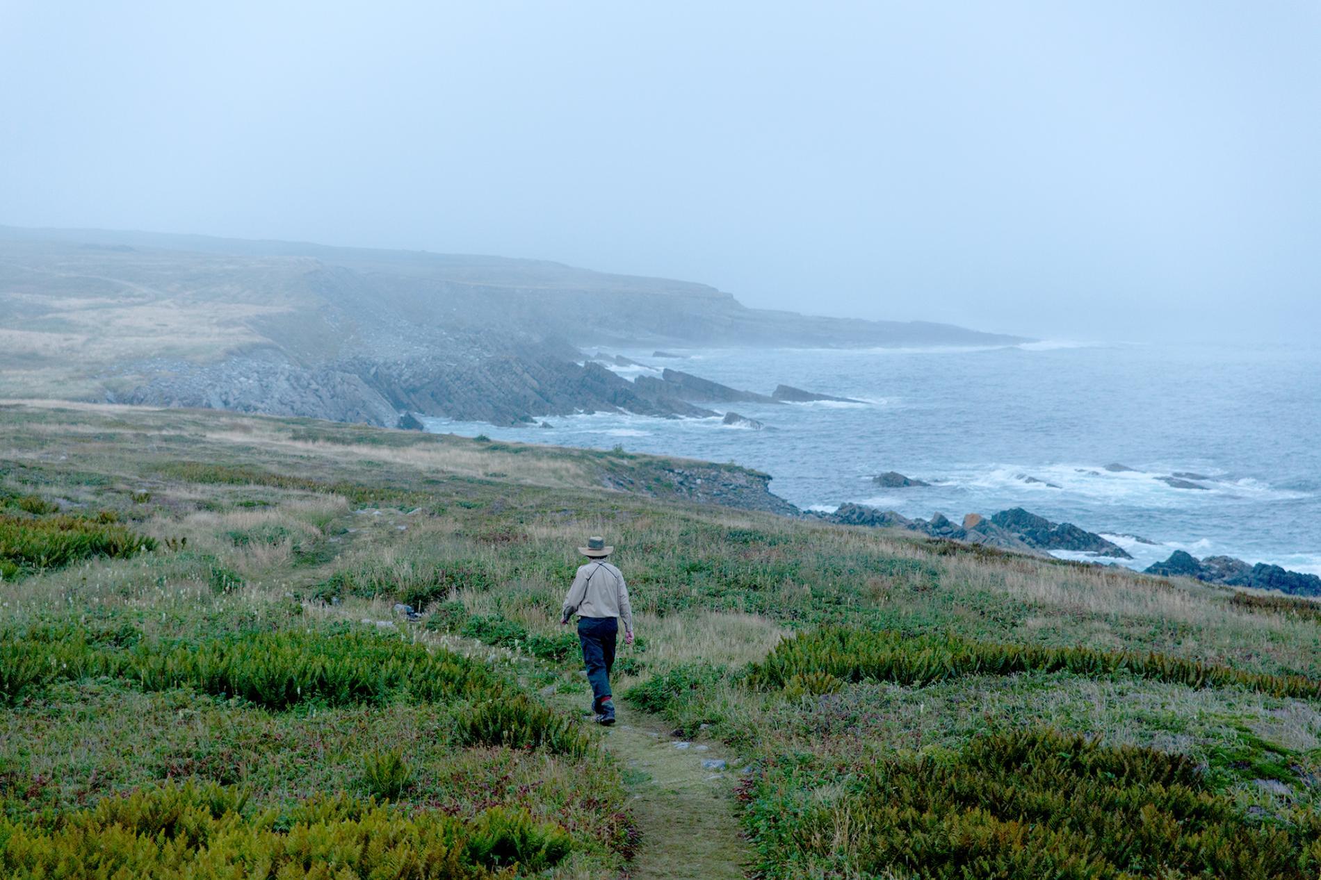 mistaken-point-ecological-reserve-newfoundland-canada.ngsversion.1508250618693.adapt.1900.1