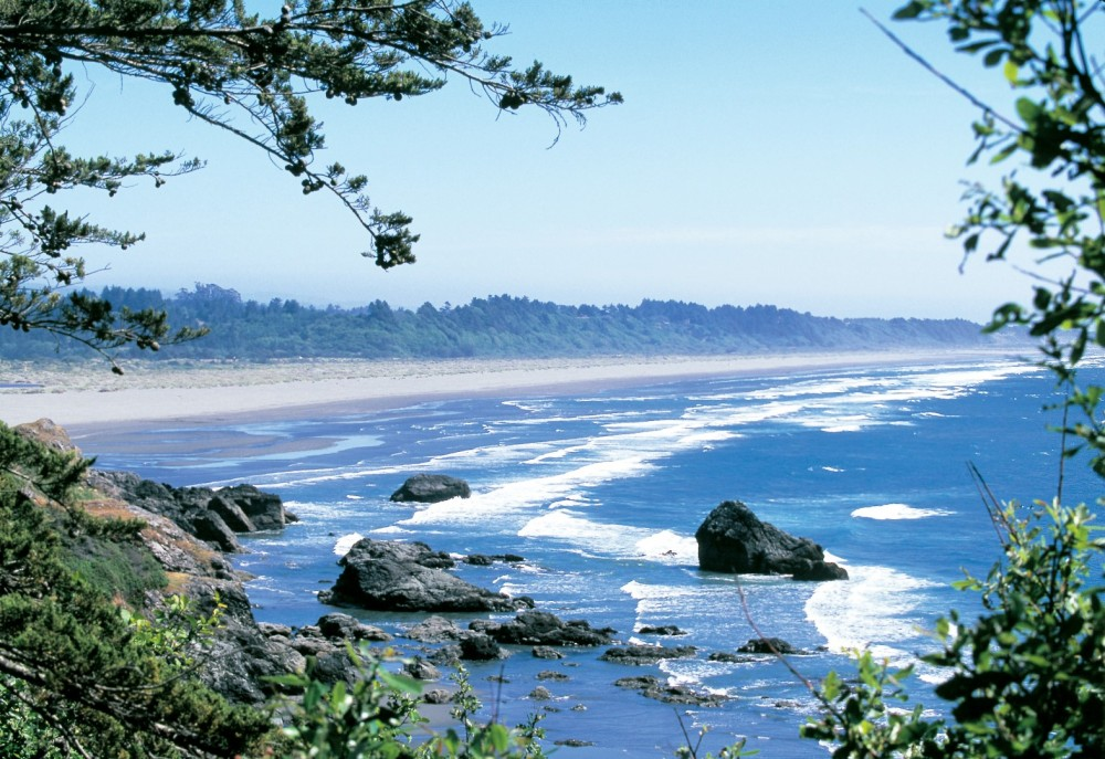 ClamBeach-Humboldt-County-Large-1000x687