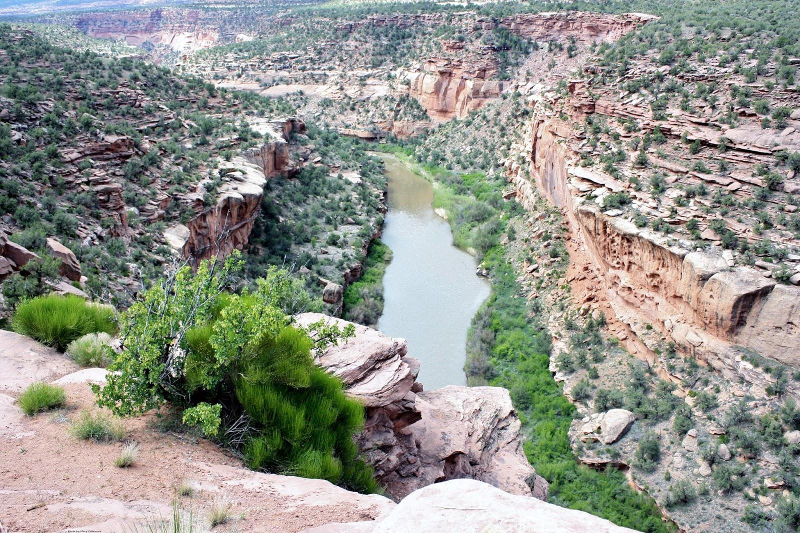 Dolores Canyon, San Miguel River