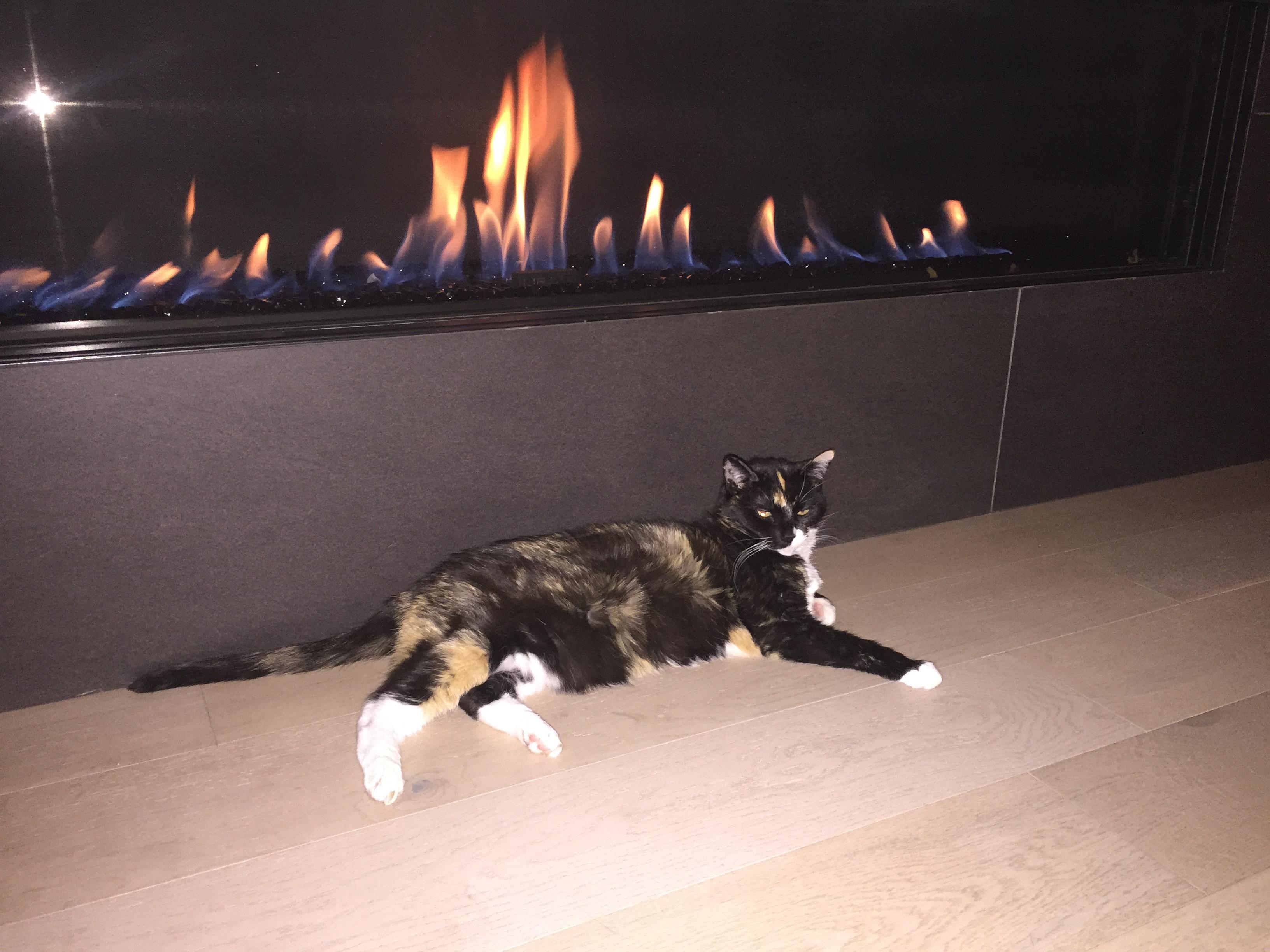 Fireplace, Sopris Mesa.jpg